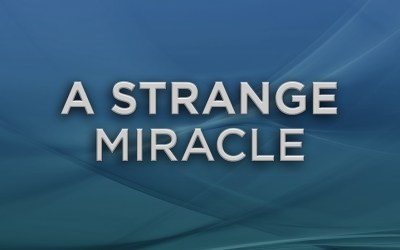 A Strange Miracle