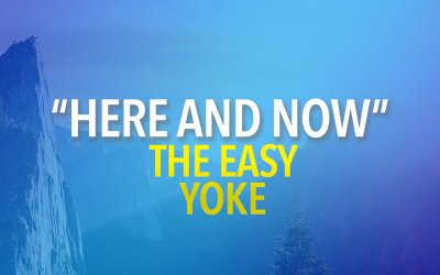 Here and Now: The Easy Yoke