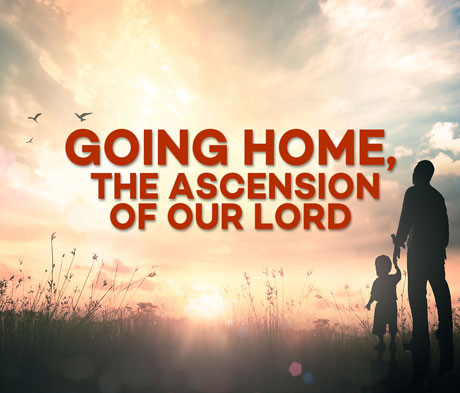 Going Home, the Ascension of our Lord
