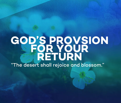 God's Provision for Your Return