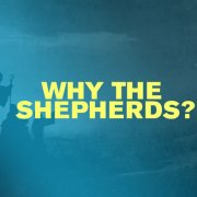 Why the Shepherds?