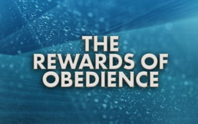 The Rewards of Obedience