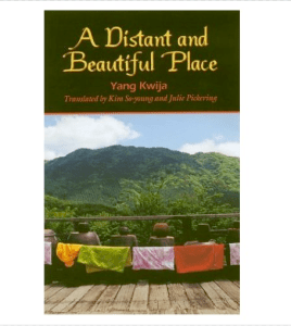 A Distant and Beautiful Place - bookcover