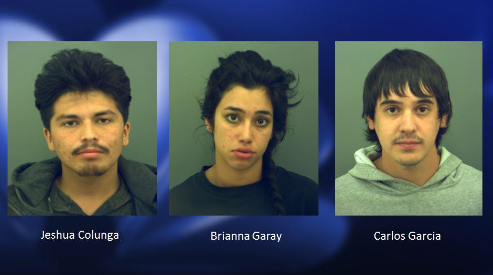 drug arrest_1491265066788.JPG