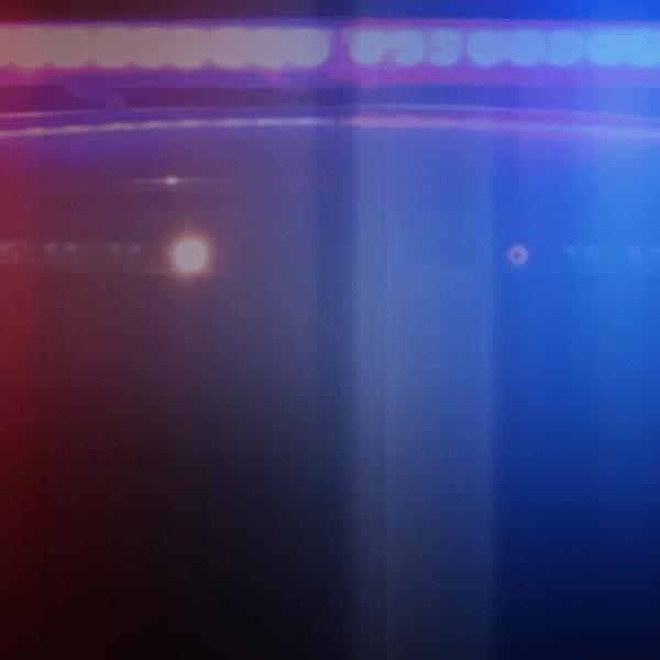 police lights_1543277893594.PNG.jpg