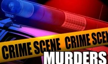 Murders Graphic