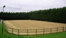 Saddle Club Arena