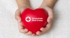 Hands holding Red Cross heart (website)