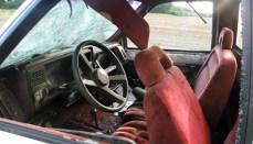 LCSO Seeks Tips on vandalism case