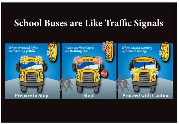 Meaning of school bus safety lights