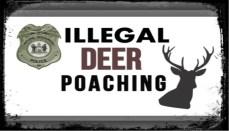 Illegal Deer Poaching