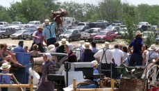 Amish Consignment Auction