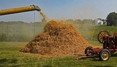 Annual Hickory Threshing and Tractor Show