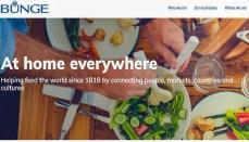 Bunge Website