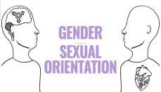 Sexual Orientation and Gender
