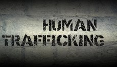 Human Trafficking Graphic