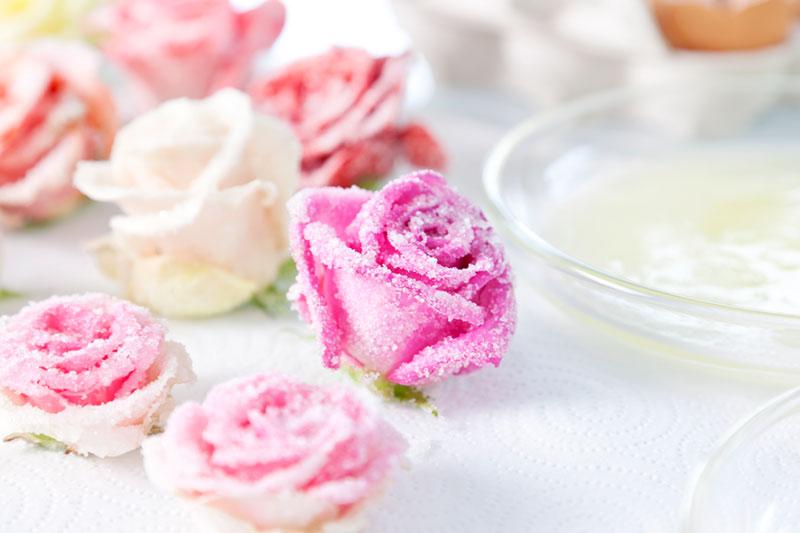 Zuckerblumen fr Tortendeko selber machen Gezuckerte Rosen