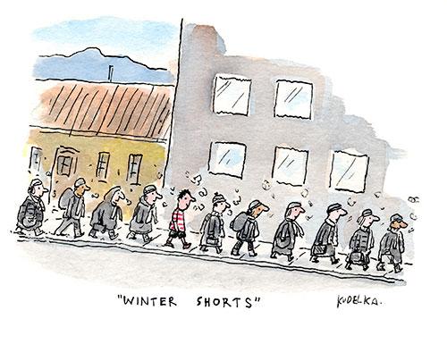 wintershorts