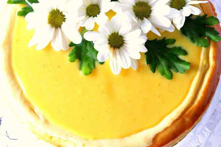 Lovely Lemon Cheesecake with Lemon Curd Topping and Shasta Daisy's - Kudos Kitchen by Renee