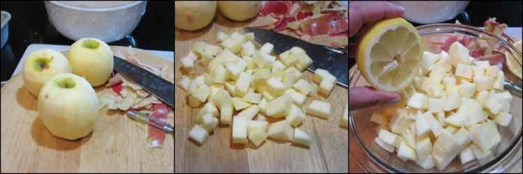 How to make No-Knead Apple Yeast Bread photo tutorial - kudoskitchenbyrenee.com