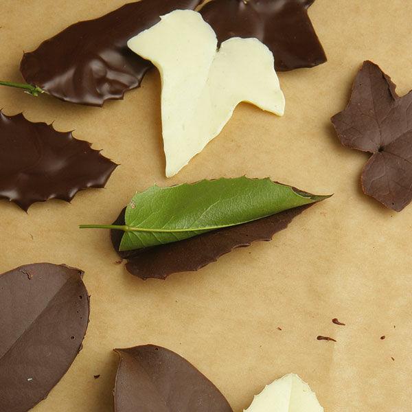 Schokoladenbltter Rezept  Kchengtter