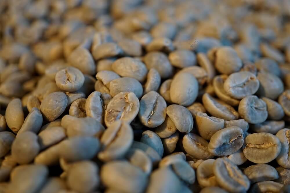 kaffeebohnen roh