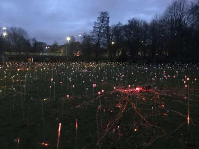 Field of Light Odense