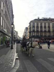 Kocije, Brisel