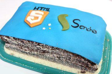 HTML5Team.jpg