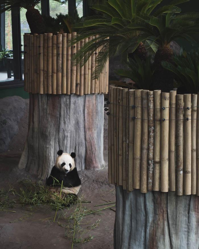 Ähtärin eläintarha | ähtäri | Hotelli mesikämmen | kotimaan matkailu