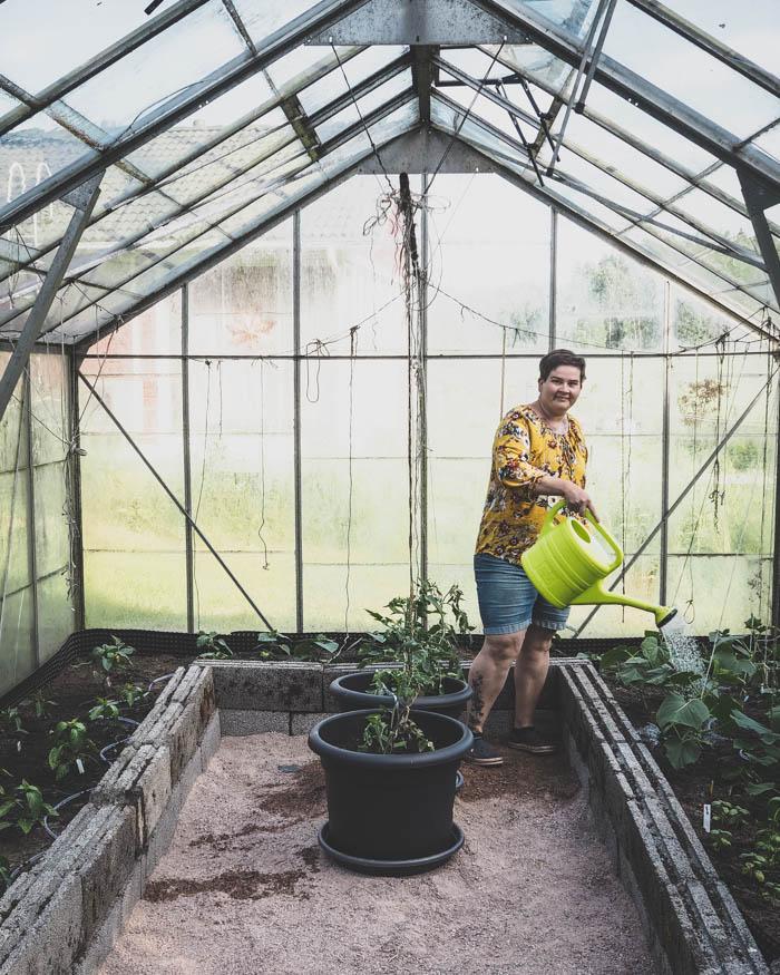 Kasvihuoneessa kasvatettavat kasvit