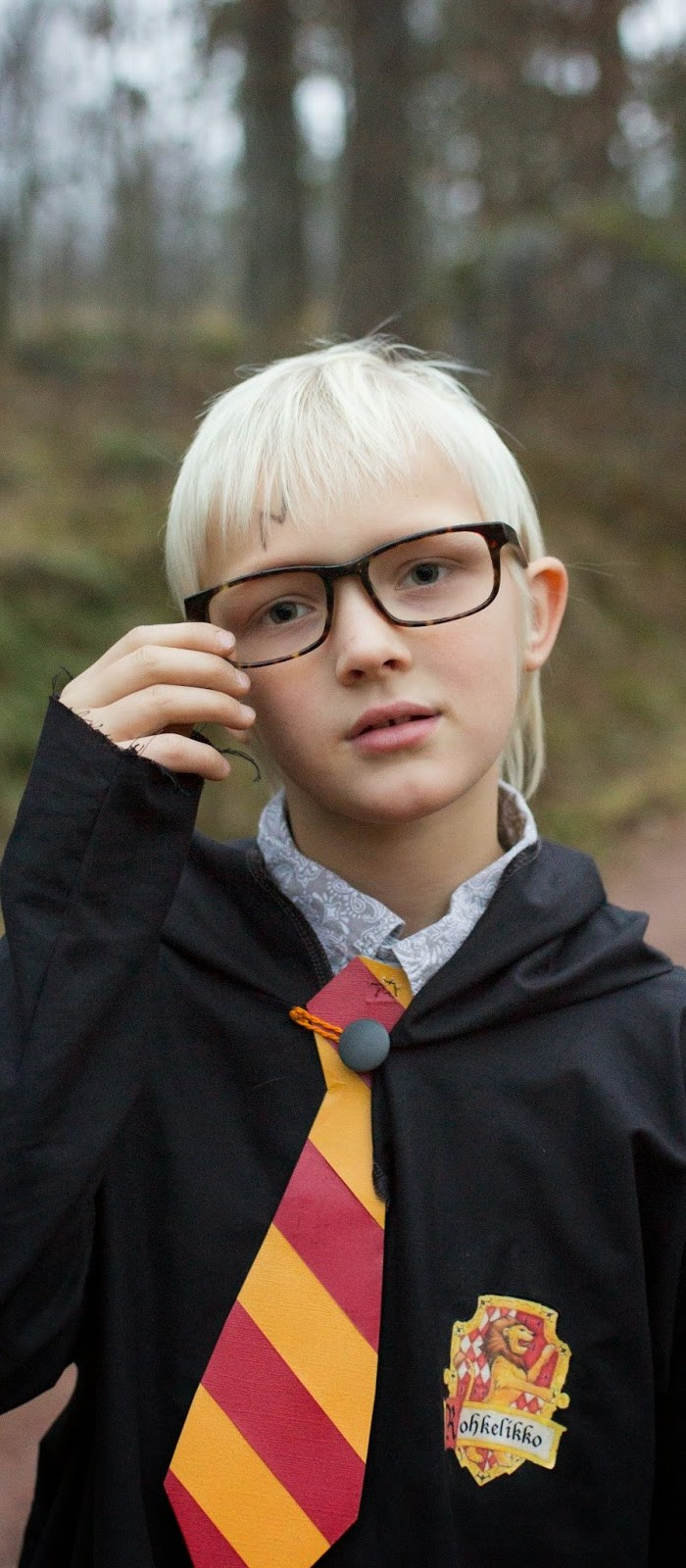 Harry Potter juhlat