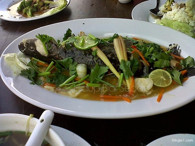 ikan baung tasik kenyir
