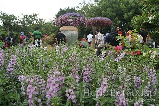 gambar pesta bunga putrajaya2012