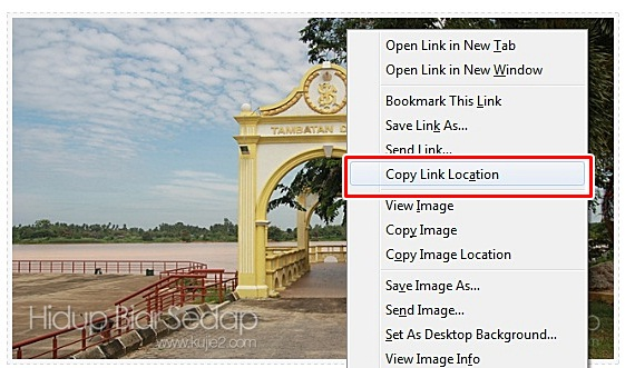 copy url location image di  apesal