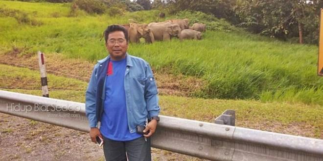 Gajah Sama Gajah Tak Bergaduh