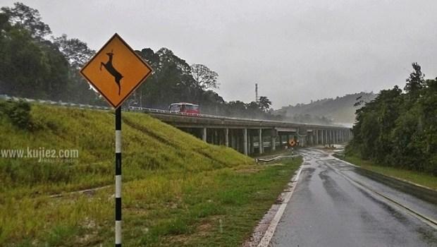 eco viaduct bridge