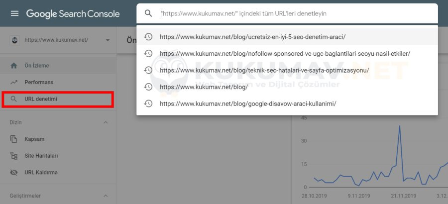 Search Console Url Denetimi