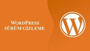 Wordpress Sürüm Gizleme