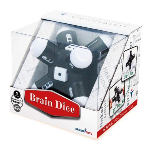 BrainDice-C_R5040-1067x800