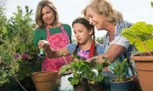 flores-niña-mama-abuela-flores-macetas-plantas