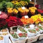 mercado-flores-frescas-gerberas-tulipanes-rosas-girasoles