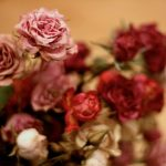 flores-secas-rosas-arreglo-floral