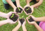 Día de la Tierra: Planta una flor, salva el planeta