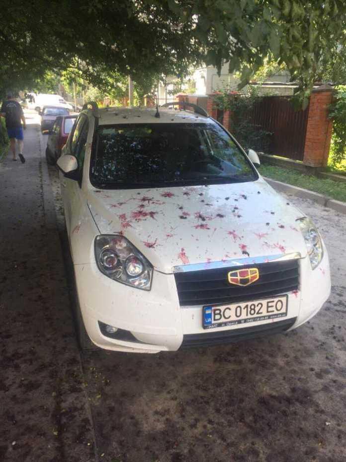 Як у Львові природа карає за паркування