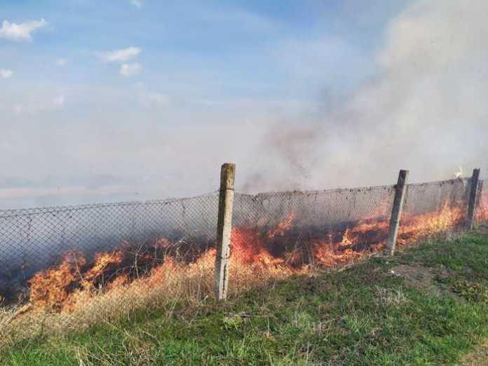 На Львівщині продовжують палити траву.Фото: ДСНС.
