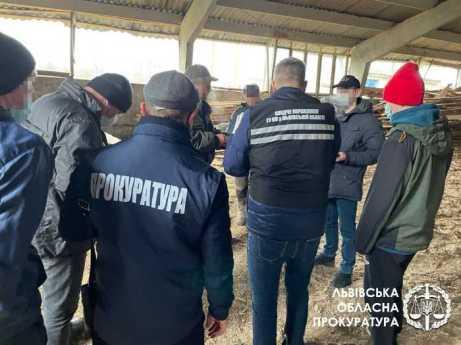 Директора одного із ДЛГП «Галсільліс» підозрюють у вимаганні хабарів за продаж лісу