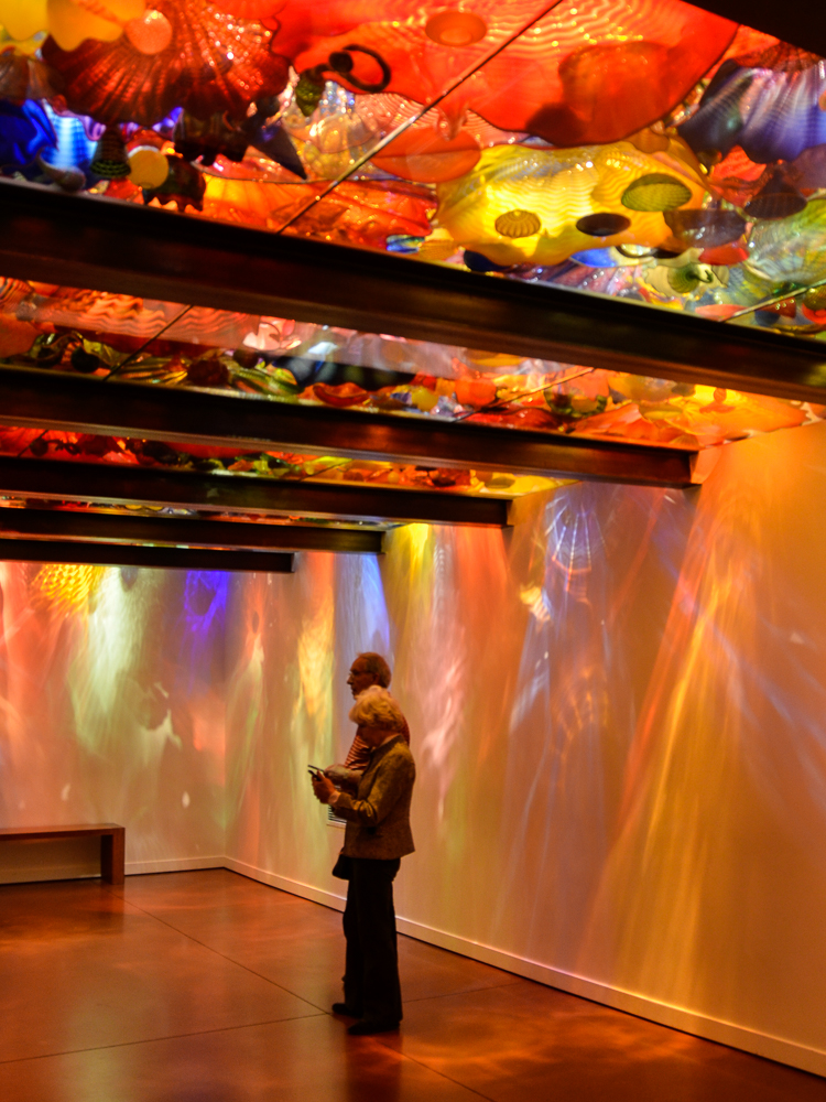 chihuly-8