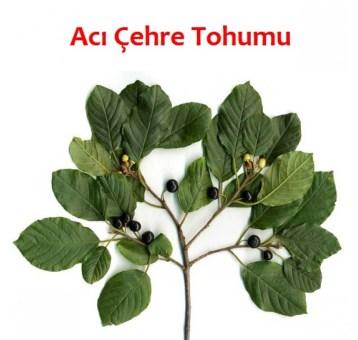 Acı Çehre Tohumu1