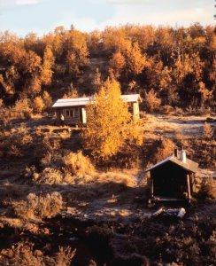 Pellisen kämpän sauna on säilynyt  sellaisena, kun se oli Petronellan toimiessa täällä emäntänä syksyllä 1949. Saunan lämmitys, vaatteiden ja astioiden pesu, veden nouto ja monet muut arkiset askareet tehtiin saunassa.